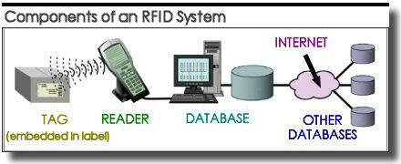 radio frequency identification rfid essay Radio frequency identification (rfid) is becoming more prevalent in the manufacturing industry to track products along the supply chain.